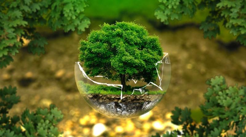 principais leis ambientais attila oliveira